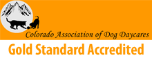 Colorado Association of Dog Daycares Gold Standard Accredited